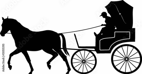 luxury carriage - 13055310