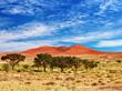 Namib Desert, Sossufley, Namibia