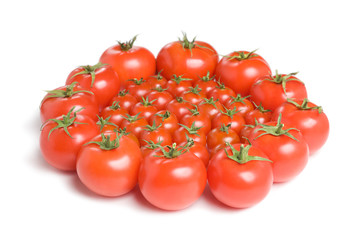 Group of tomatoes-1