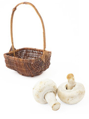 A little basket and two mushrooms