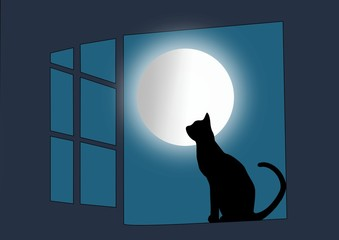 Moon shining on cat in window