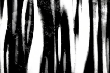 Black & White streaks - digital animation