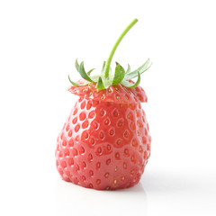 isolated strawberry on white background