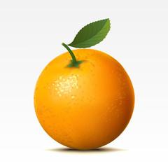 Orange on a white background