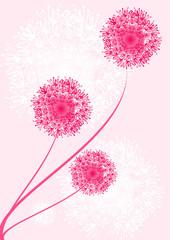 design floral rose