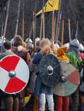 Viking warriors poster