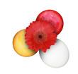 Bunte Ostereier mit Blume