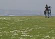 Pareja paseando por el campo