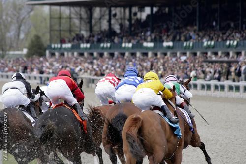 Horse Race - 13230129