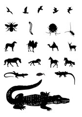 Mixed animal silhouettes set