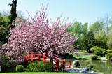 Jardin public à Toulouse
