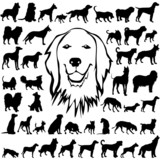 44 pieces of vectoral dogs silhouettes.