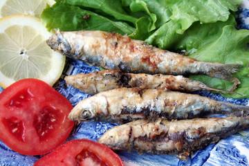 Sardinhas-Sardine-Pilchard-Fish-Sardina-Peixe-Sardinha