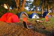 Camping - 13314356
