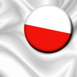 roleta: Bandiera Spilla Polonia-Poland Badge Flag-Drapeau Pologne
