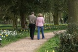 couple walking along a gravel path with daffodils poster