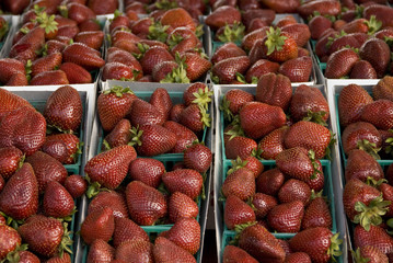 strawberries in three packs