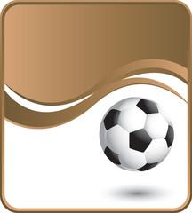 Classy brown soccer ball