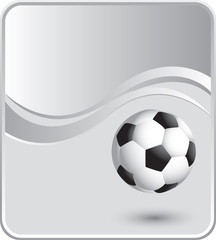 classy soccer ball