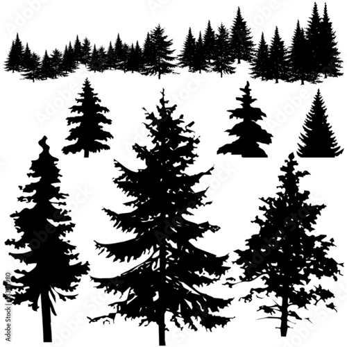 tree silhouette pictures. Pine Tree Silhouettes