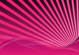 Fototapety pink abstract background with rays