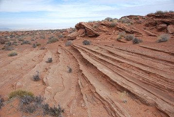 Arizona Dunes
