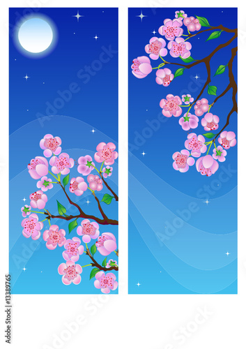 Spring banners with blossom branch in night.