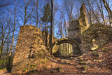castle ruins in the forest