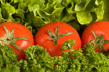 Fresh red tomatos on verdure background composing of salad and p