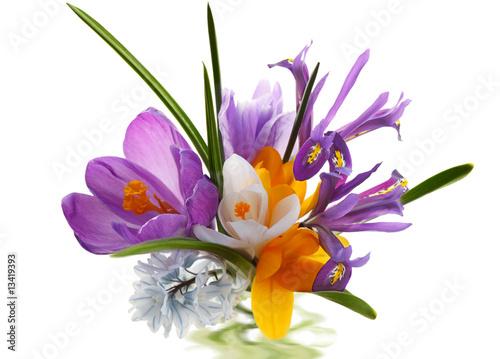 Staande foto Iris Flower Bouquet