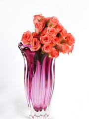 Pink roses in a flower vase