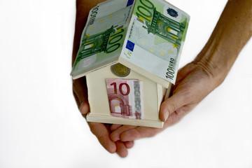 casetta di euro su sfondo bianco