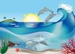 Ocean Life..