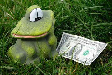the frog and dollar