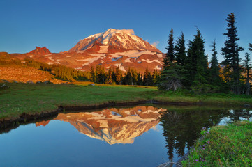 Mt. Rainier reflections