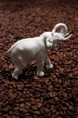 Elefant und Kaffee