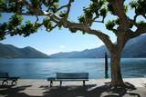Fototapety panchina e lago in ticino, svizzera, ascona