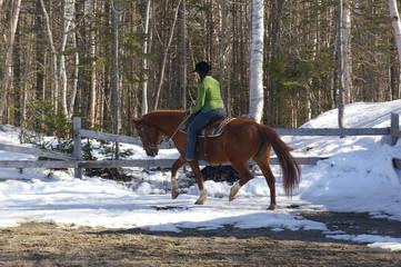 Équitation Western