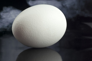Egg with reflection. Smoke background.
