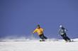 Ski Alpin auf perfekter Piste