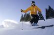 Skifahren an einem perfekten WIntertag