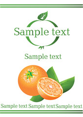 vectorial label on orange drink