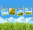 Tall grass with 4 pictures on clothesline