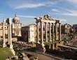 Roma-Veduta del Foro Romano