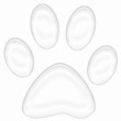 Empreinte chat blanc vector