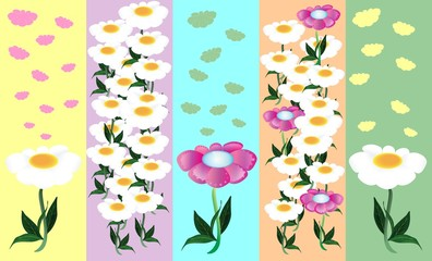 background - stripes and daisies