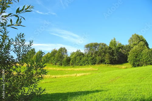 Green grassland and blue sky