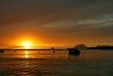 Fototapety barque au coucher de soleil aux Antilles