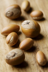 shea and argan nuts