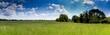prairie camarguaise